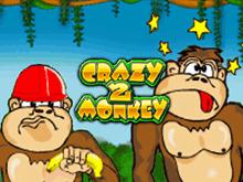 Автомат Crazy Monkey 2 в казино Вулкан на деньги