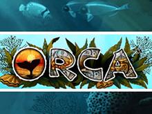 Играть в игровые автоматы Вулкан Orca