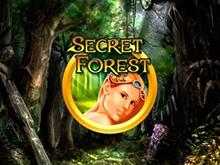 Бонусы в игровых автоматах Secret Forest
